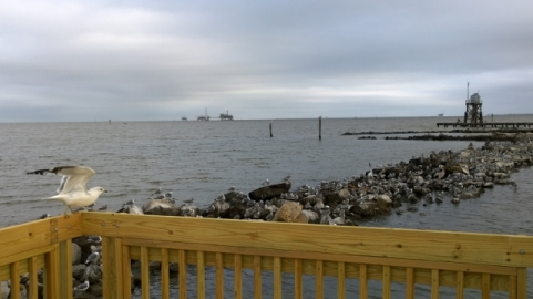Natural Gas Platforms in Mobile Bay