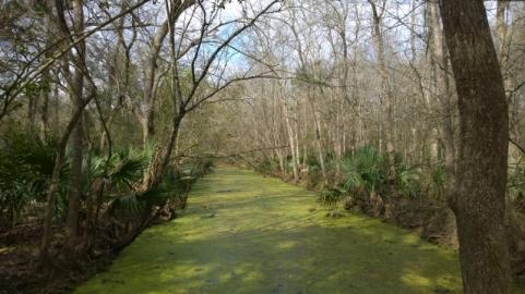 Lagoon Trail