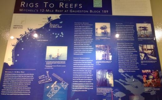 Reef creation