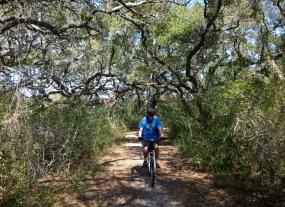 Turk's Cap Trail
