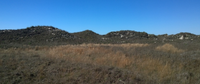 Grassland Nature Trail