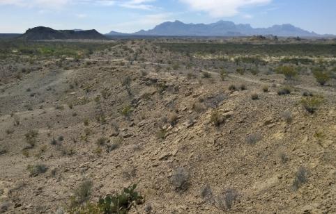 Fossil area