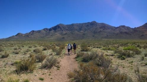 Baylor Canyon Trail