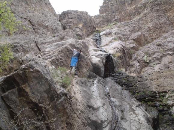 Curiosity Bouldering