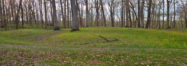 Fiddle Back Mound