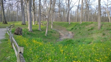Great Mound