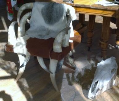 Antique Cattle Horn chair