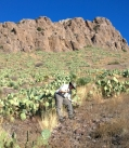 Rockhound SP - Joel hunting for rocks