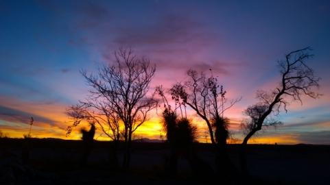 Desert Sky Sunset