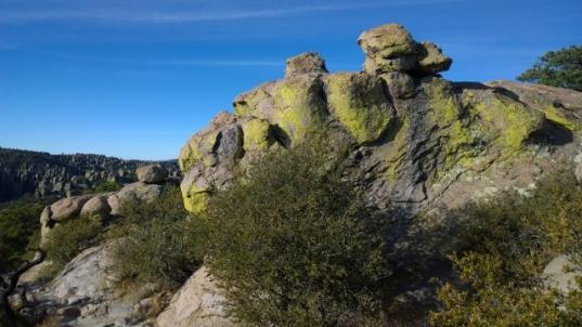 Massai Trail