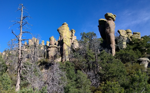 Ed Riggs Trail