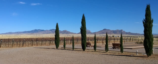 View from Lightning Ridge Cellars