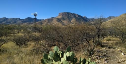 Guindani Trail