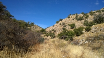 Guindani Canyon