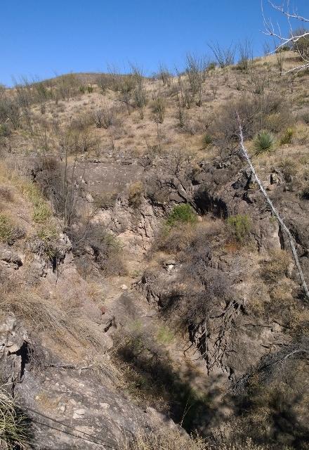 Creek Canyon