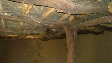Mud dwelling with Ocotillo ceiling