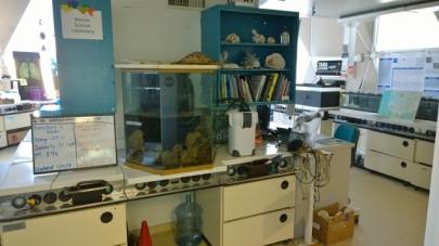 Original lab area