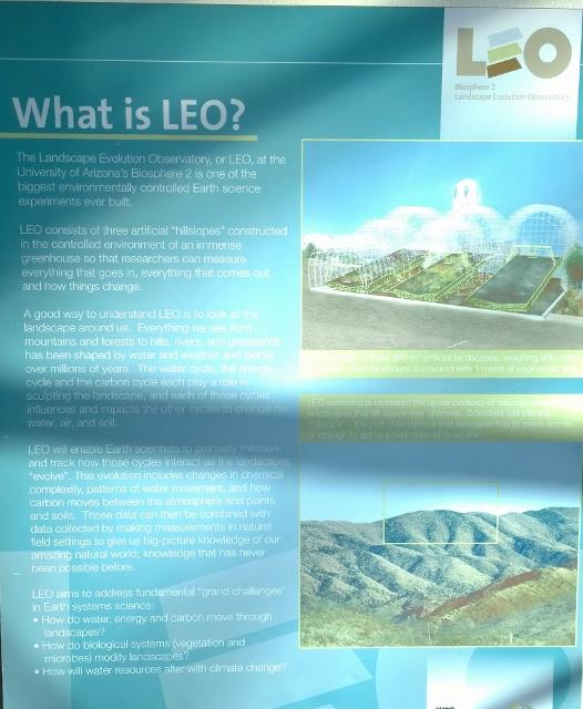Leo experiment