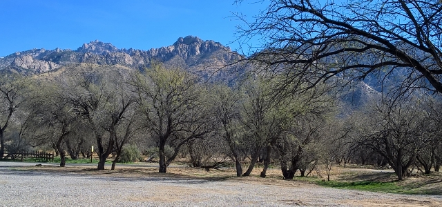 View from overflow campsite in Catalina SP