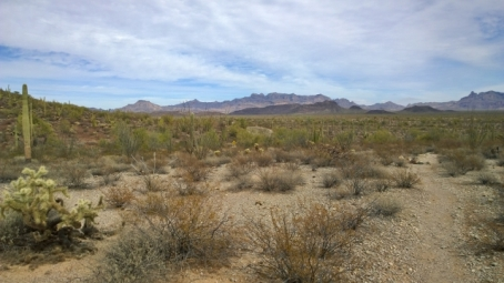 Palo Verde Trail to Visitor Centre