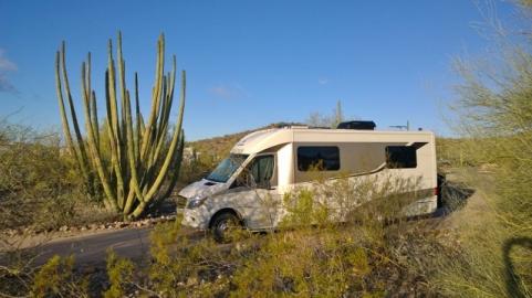 Organ Pipe Cactus NM campsite