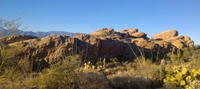 Javelina Rocks