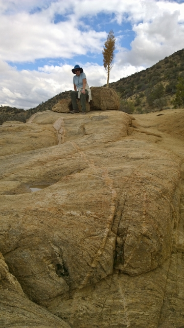 Veined rocks