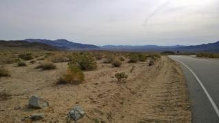 2 Deserts meet