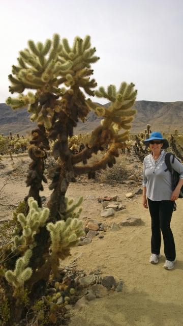 Sharon in Cholla Cactus Garden