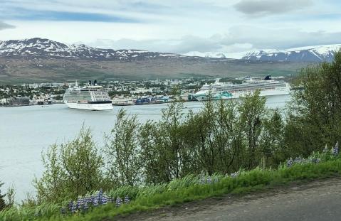 Cruise Ships in Akureyri