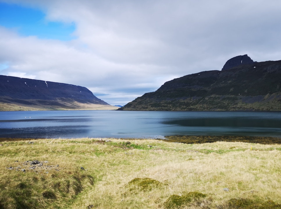 Fjord view along drive