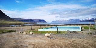 Reykjafjardlaug