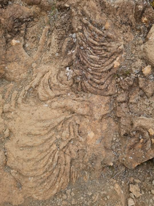 Hvannabrekka Lava Flows