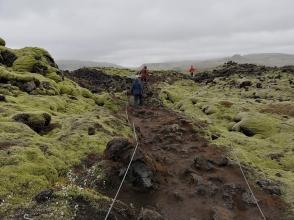 Skaftareldahraun - Short hike