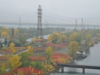 Fall Colours off Montreal Bridge
