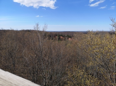 View from Observation Tower