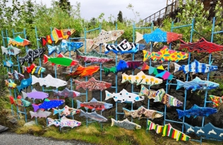 School children exhibit for 50th anniversary of fish ladder