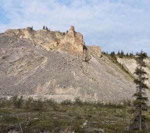 Gyrfalcon rock