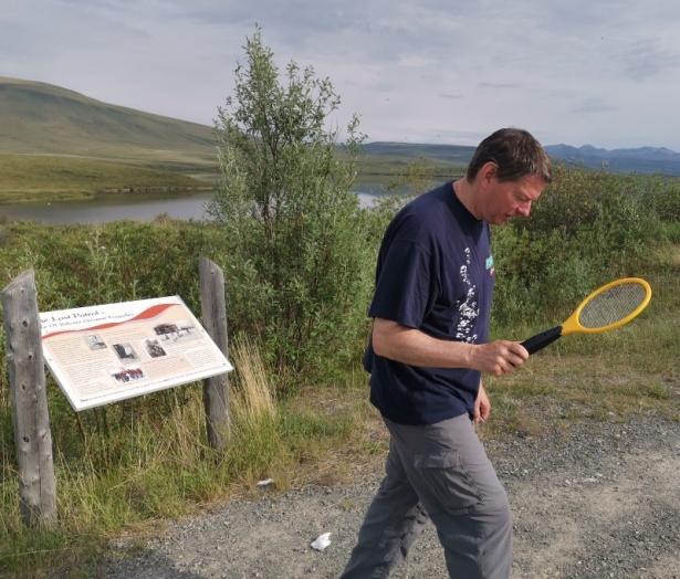 Joel zapping mosquitoes
