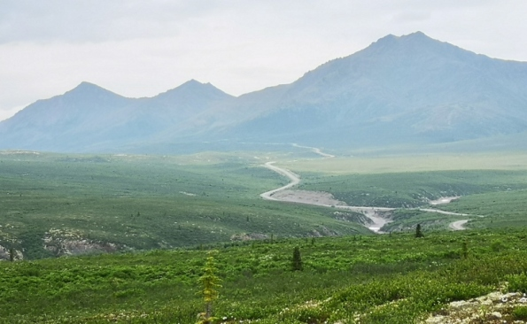 Dempster Highway leading to Goldensides