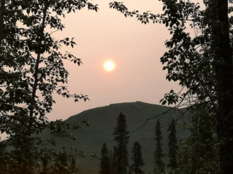 Forest fire haze in the morning