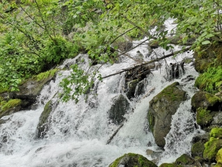 Pioneer Falls
