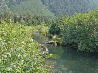 Williwaw Creek