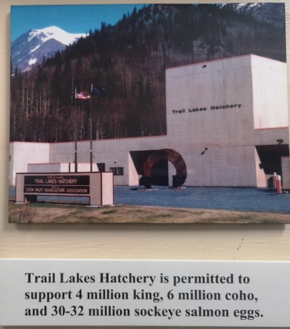 Trail Lakes Hatchery