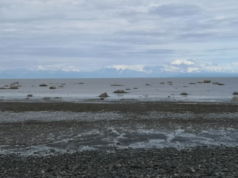 Low tide along Captain Cook SP beach with snow covered volcanoes across the channel