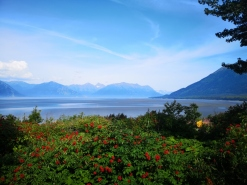 Low tide on Turnagain Arm from campground