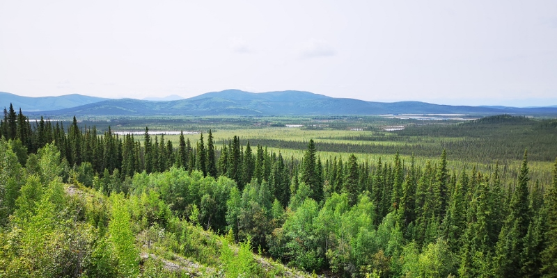View from Tetlin National Wildlife Visitor Center
