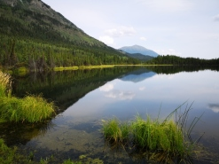 Nice reflection on Pickhandle Lake