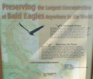 Alaska Chikat Bald Eagle Preserve