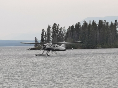 Float plane coming in